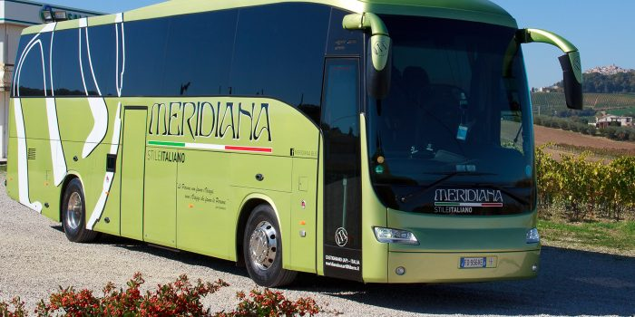 flotta meridiana bus new domino