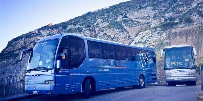 meridiana bus flotta fleet
